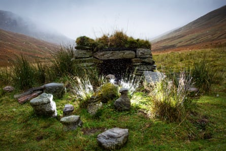 The shelter where the Cailleach and her 'family' will be placed until May.