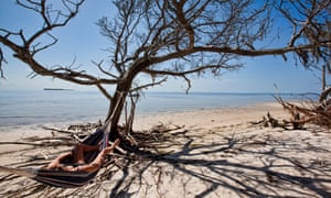 Woman lying in a hammock strung from an old Oak Tree that is right along the shoreline of a sandy beach