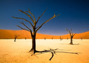 This winning entry in the youth environment section of the Sony world photography awards was taken by a 17-year-old South African, Bernard Pieterse, deep in the Namib desert.