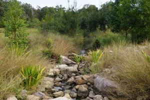 Small Creek in Ipswich, Queensland
