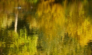 Autumnal reflections on the pond at Chartwell