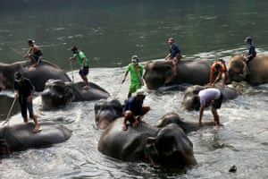 Kanchanaburi, Thailand Migrant workers from Myanmar bathe elephants that would normally be employed in the tourism trade