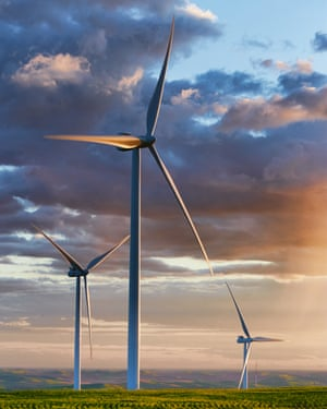 Wind turbines in wheat fields.