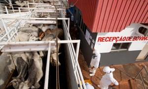 A Marfrig slaughterhouse