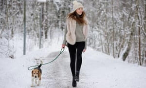 Happy woman walking/ running with beagle dog winter walk path<br>Happy woman running with beagle dog on winter walk path