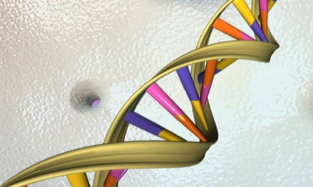 The hack was only possible because of weakness in the DNA sequencing software.