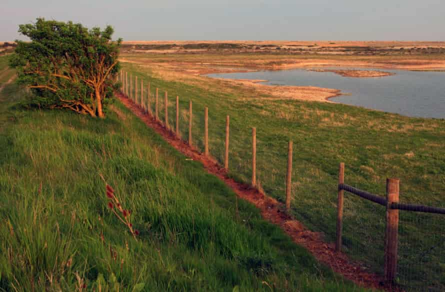 Rye Harbour nature reserve just before sunset.