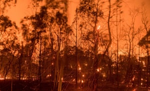 In this long exposure photograph, embers fly off smouldering trees