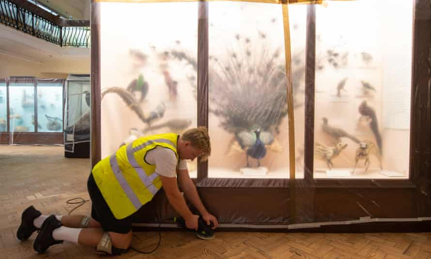 Off limits … every museum in Britain has been closed for the first time since the second world war. Pictured, the Horniman in London.