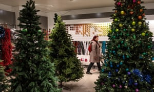 Christmas trees in shop