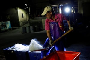 A fisherman prepares ice to transport the scaled sardines to market.