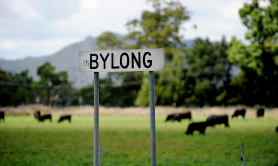 Bylong sign and green field with cows
