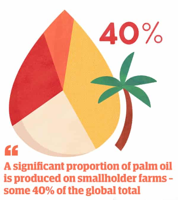 """Illustration of palm tree with quote: """"A significant proportion of palm oil is produced on smallholder farms - some 40% of the global total"""""""