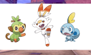 Pokémon Sword and Shield's starter Pokémon, from left: Grookey, Scorbunny, and Sobble.