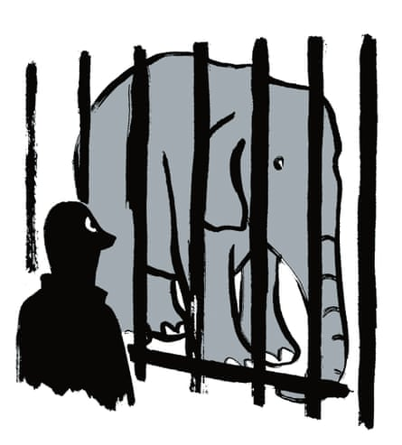 Illustration of a man looking at an elephant behind bars