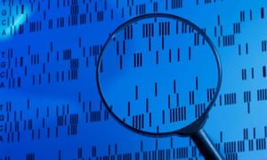 DNA Sequence Examined Under a Magnifying Glass in a Laboratory<br>A6TYCM DNA Sequence Examined Under a Magnifying Glass in a Laboratory