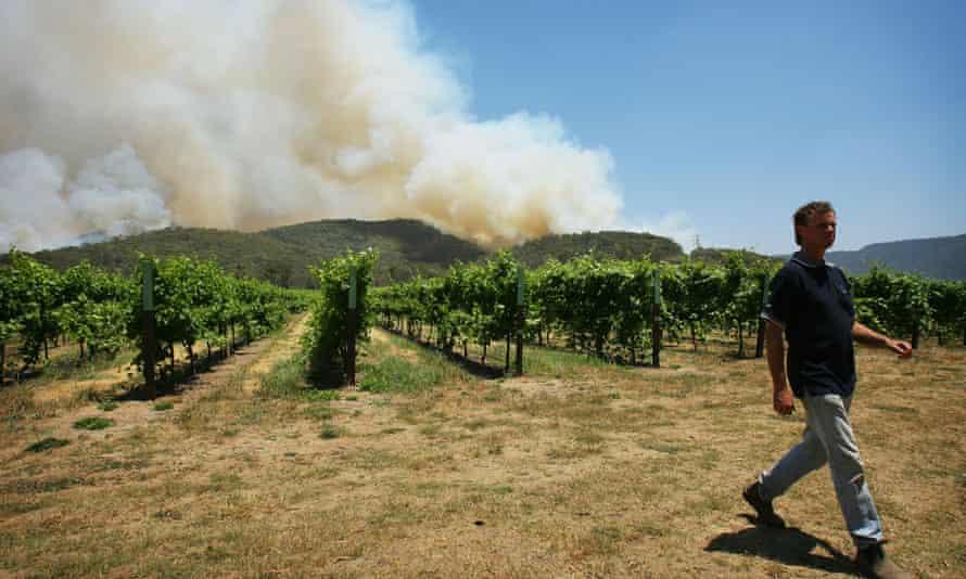 bushfires near a vineyard in Victoria