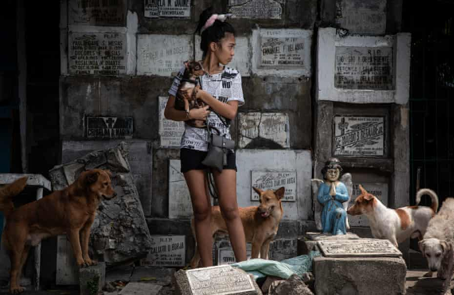 هانی ، 18 ساله ، دانشجوی ارشد فارغ التحصیل ارشد پاسای شرق.  او هشت سگ را تحت مراقبت خود دارد و در حال حاضر با مادر و پدرش در قبرستان زندگی می کند.