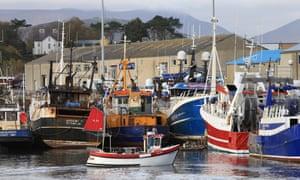 Fishing vessels in Kilkeel harbour, County Down.