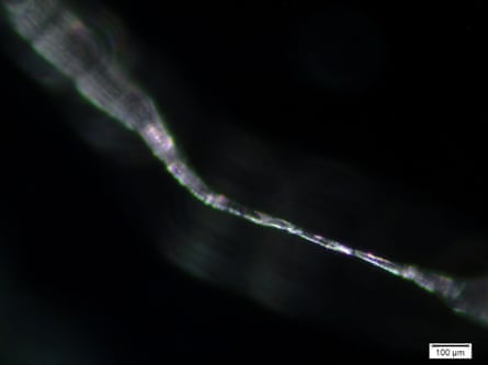 An inverse image of a plastic fibre. Microplastics can travel through the atmosphere and end up in regions far from their original emission source.