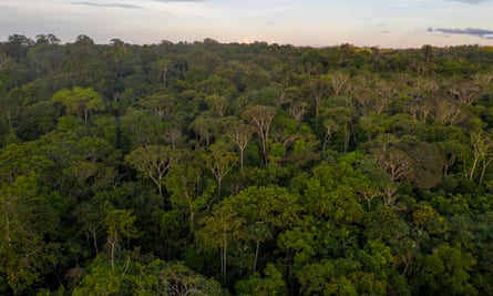 An aerial view of indigenous land in the Amazon rainforest, Brazil.