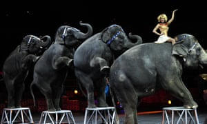 Ringling Bros and Barnum & Bailey circus had been under heavy criticism for its use of animals in shows.