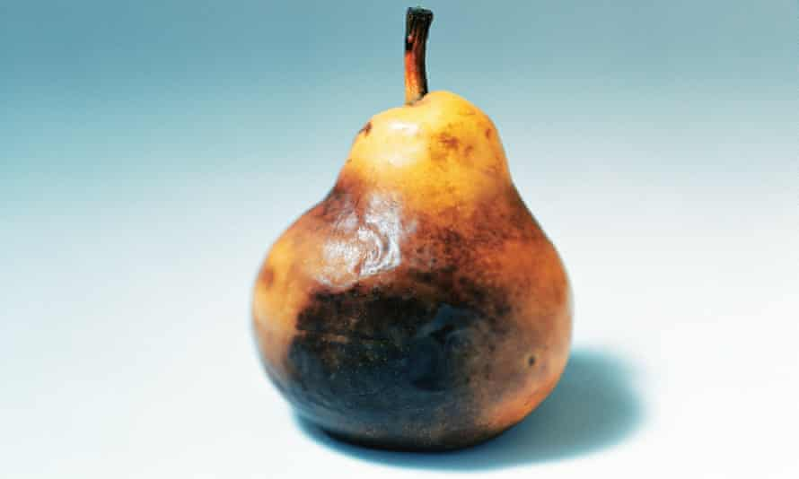 Mouldy pear