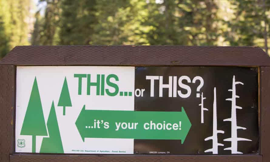 A wildfire sign in California's Sequoia National Park. The choice between Trump and Biden's climate change policies is similarly stark.