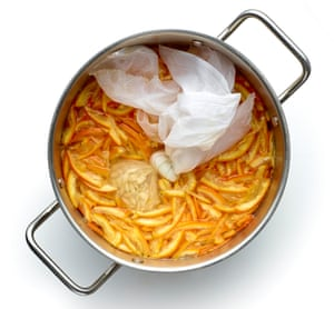 Add pips in a muslin bag, cover the lot with water and simmer for two hours.