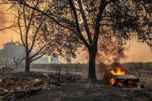 The Kincade fire burned near Geyserville, California on 24 October.