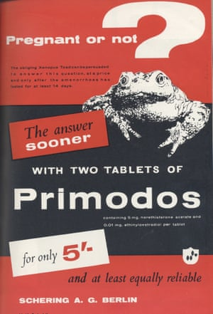 "A red page with a thick black bar across it; a toad climbs over the bar, its head forming the dot at the bottom of a big question mark.  The biggest text reads ""Pregnant or not, the answer sooner, with two tablets of Primodos, for only 5 shillings""."