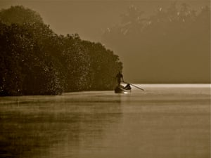 People and nature winner: Man in Mangrove photographed in Kerala, India