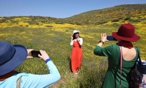 A woman is photographed amid a wildflower 'super bloom' covering the hills surrounding Diamond Valley Lake near Hemet, California, 24 March 2019.