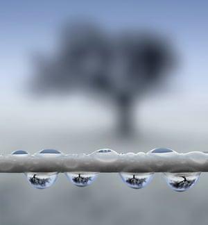 Raindrops on the Washing Line Hertfordshire, England