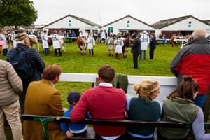 Bernard Llewellyn judges cattle at the Great Yorkshire show