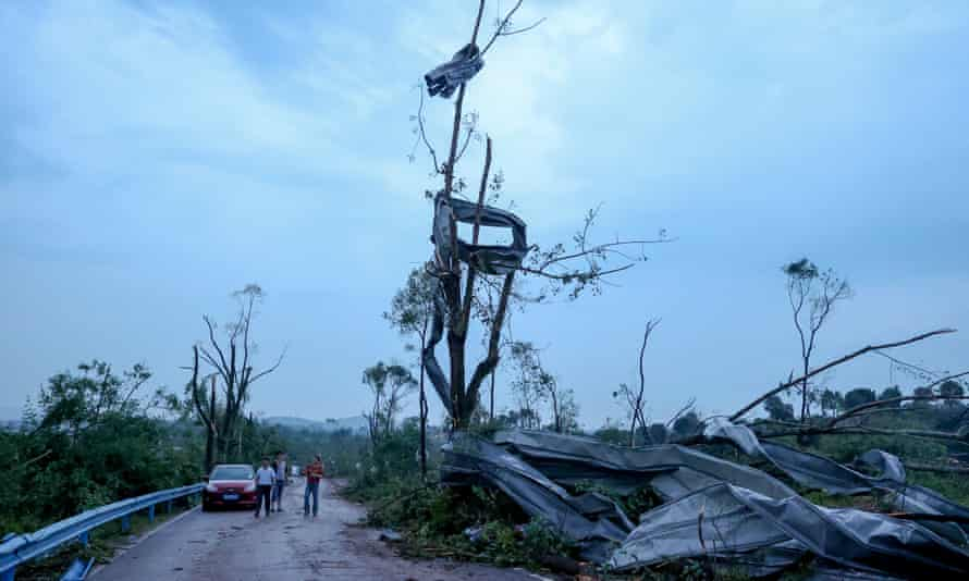Debris hang on a tree after a tornado ripped through Caidian district of Wuhan, Hubei province, China.
