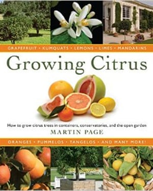 Growing Citrus book cover
