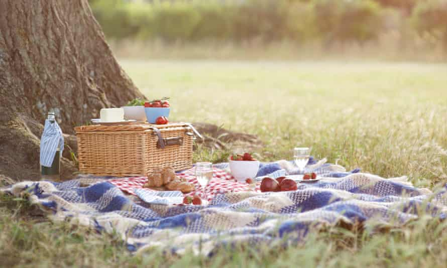 Picnic and hamper beside tree in meadow.