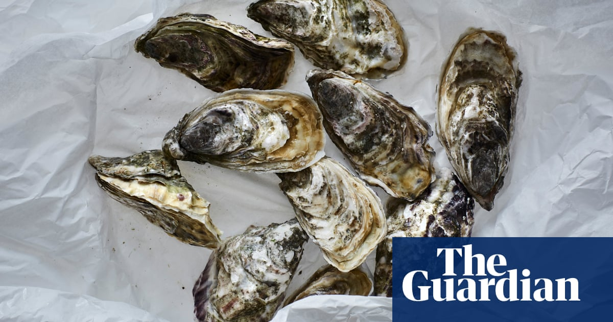 Oysters are animals, so the answer's simple, right? Apparently not. Welcome to the moral maze of bivalves and eating things with faces ... Is that a