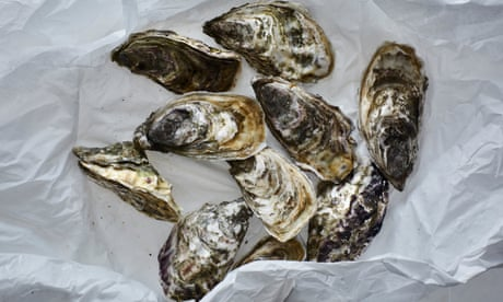Are oysters vegan?