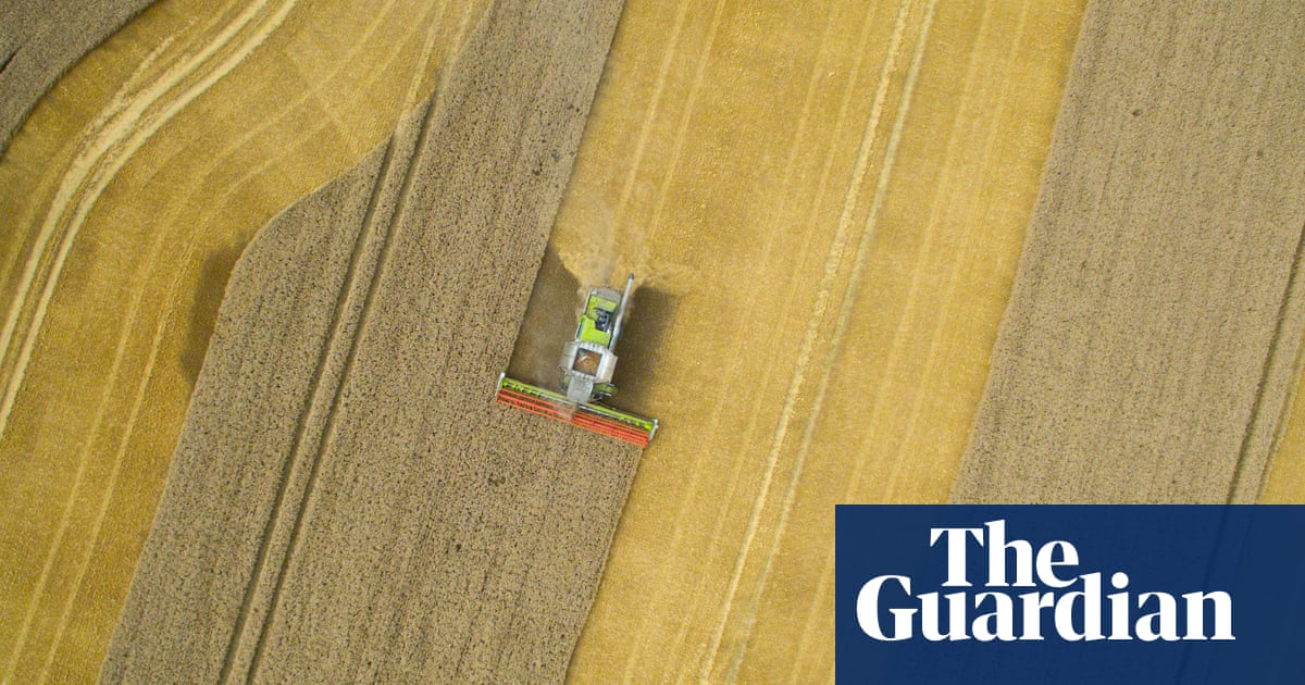 Universal Harvester by John Darnielle review – welcome to
