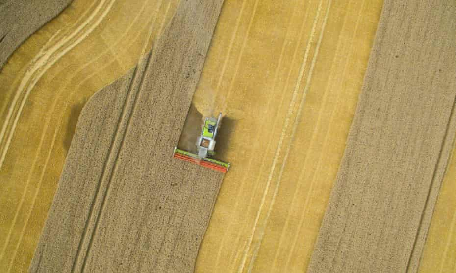 Darnielle captures the alienating vastness of the Iowan cornfield.