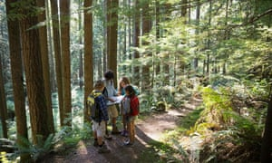Children study a map on a woodland adventure trail.