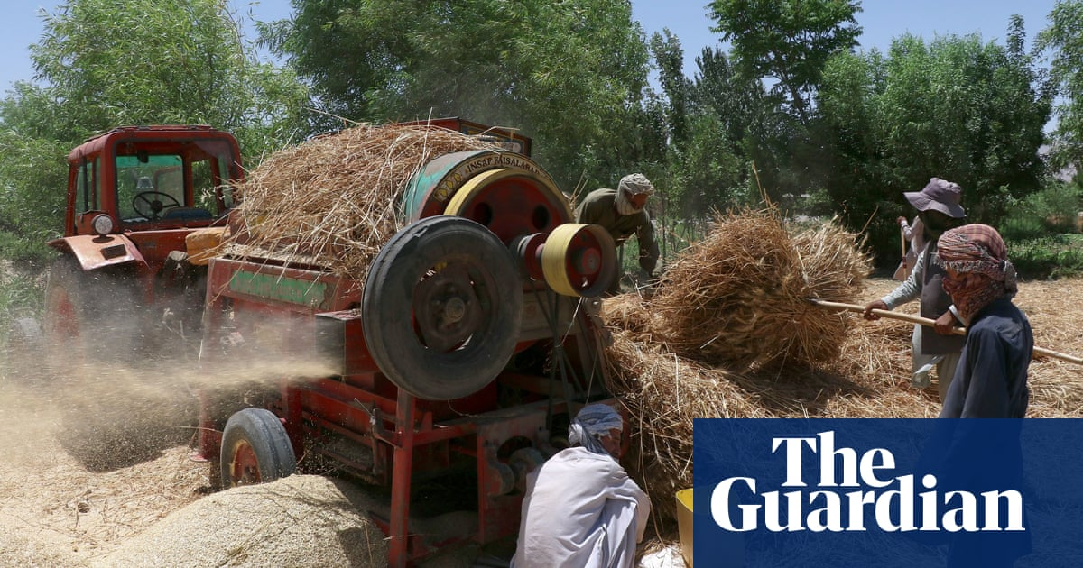 Taliban 'forcibly evicting' Hazaras and opponents in Afghanistan