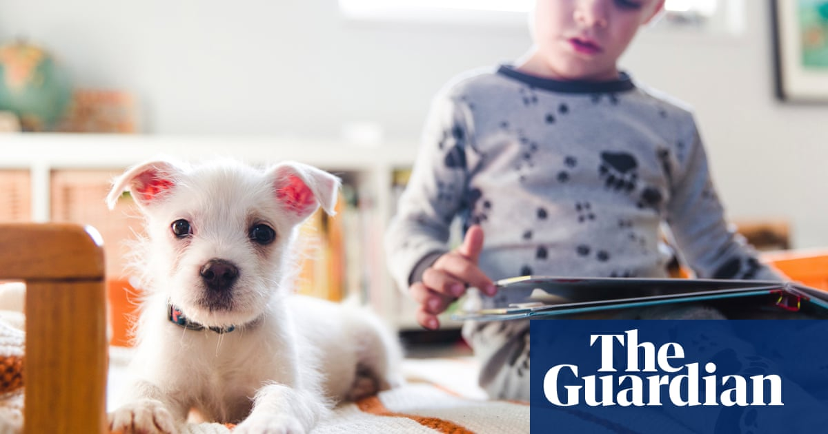 Landlords charge 'pet rent' to recoup losses after ban on unfair fees