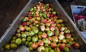 The great cider debate: how do you like them American v ...