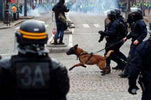 French riot police with dogs repel protesters during the demonstration