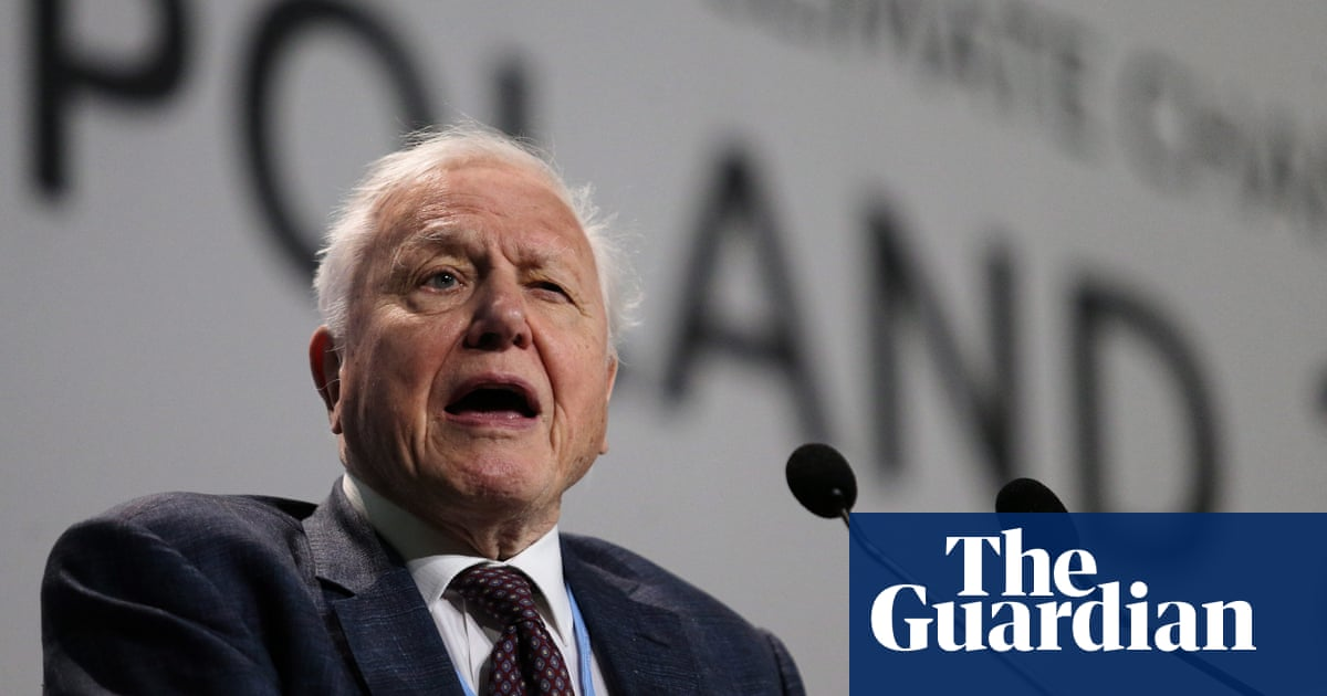 David Attenborough: collapse of civilisation is on the horizon