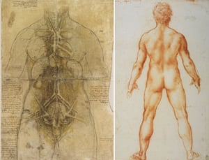 The cardiovascular system and principal organs of a woman; and Study of a male nude from behind, by Leonardo da Vinci.