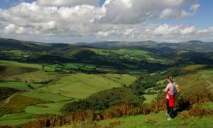 Glyndŵr's Way near Machynlleth, Powys, Wales.
